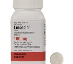Lincocin kapsułki