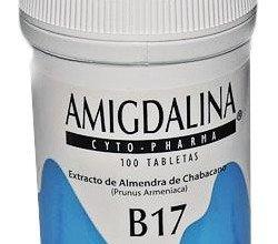 Amigdalina Witamina B17