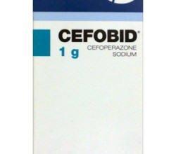Cefobid