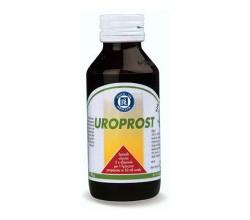 Medycyna i akcesoria Uroprost, plyn, 90 g