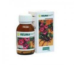 reumaphyt-kapsulki