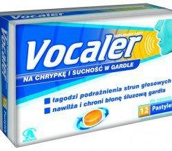 Vocaler pastylki